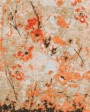 Buy Hand Knotted rugs and carpet online - F06(HK)(1-Warm-3)