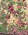 Buy Hand Knotted rugs and carpet online - F06(HK)(5-Contrast-1)